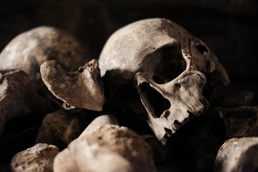 ossements humains retrouvés à perpignan